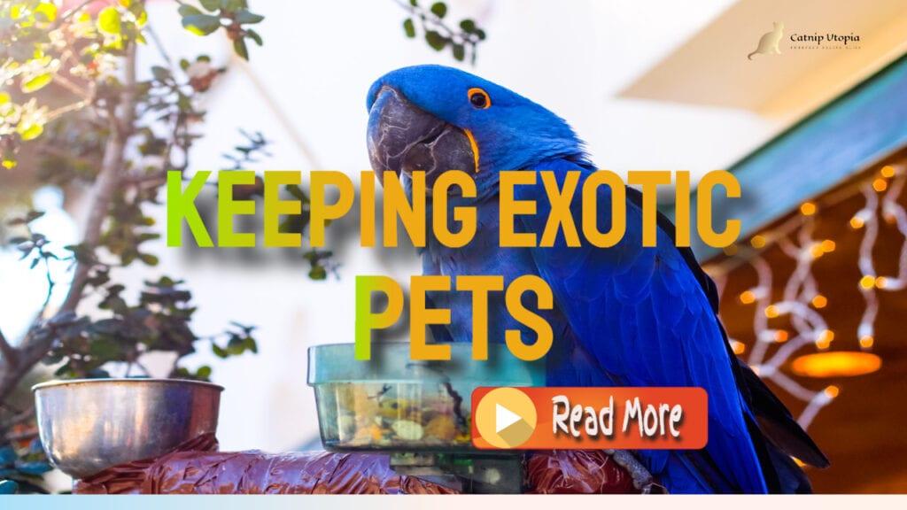 keeping Exotic pets