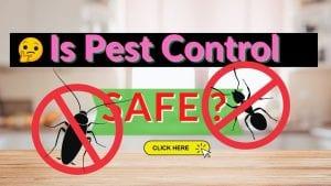 pest contol safety